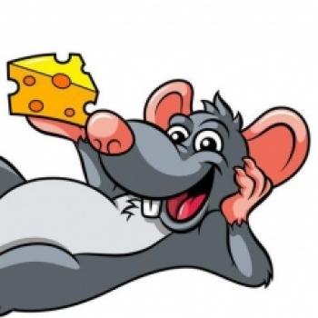 Биржевая Мышь