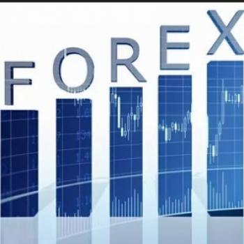 Profit Forex